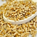 Picture of Wheat Berries (Hard Red) 25 Lb. (1 pcs Case)