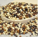 Picture of Quinoa - Tri-color 25 Lb. (1 pcs Case)
